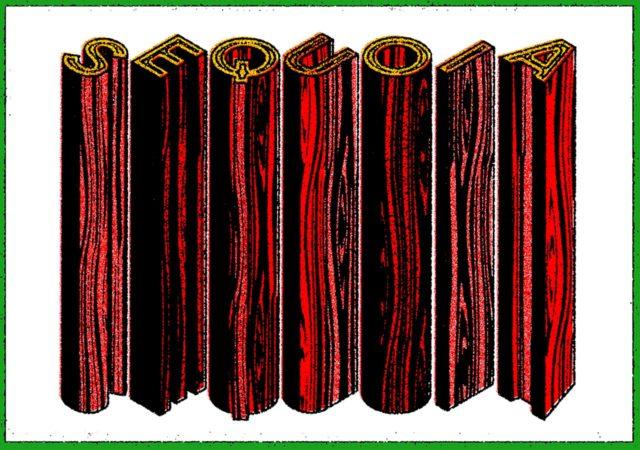 Illustrated post cards by illustrator Steven Wilson